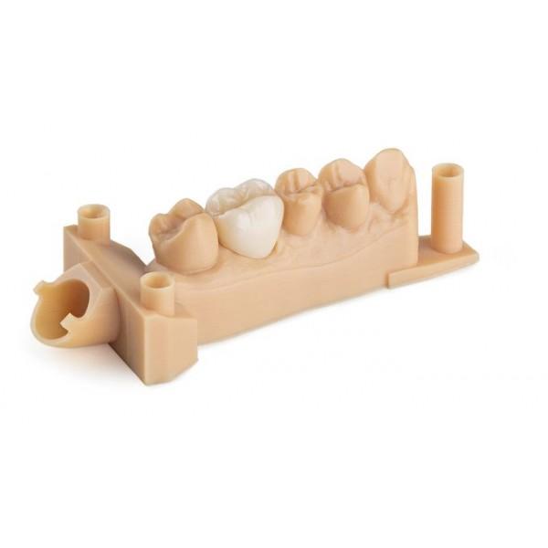 Dental 1 L